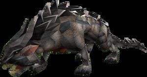 Dragon wolf adolescent