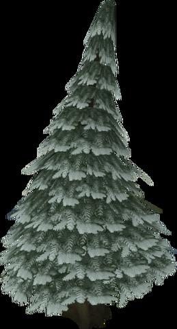 File:Arctic pine.png