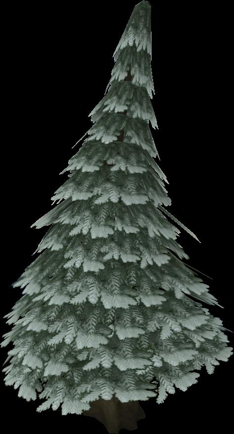 Plik:Arctic pine.png