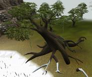 Season tree2