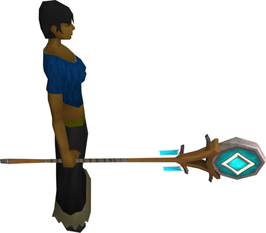 File:Banner of Seren equipped.png