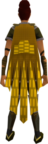 File:Team-16 cape equipped.png