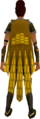Team-16 cape equipped.png