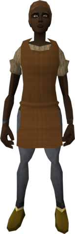 File:Brown apron (female) equipped.png