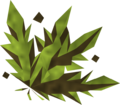 Grimy snake weed detail.png