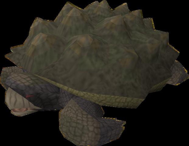 File:Tortoise old.png