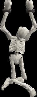 Hanging skeleton built