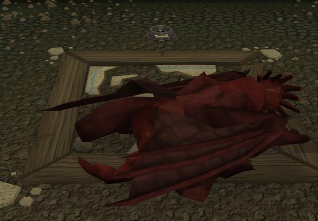 File:Dragon Sleep.png