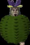 Cactus (monkey)