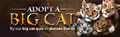 Adopt a big cat lobby banner.png
