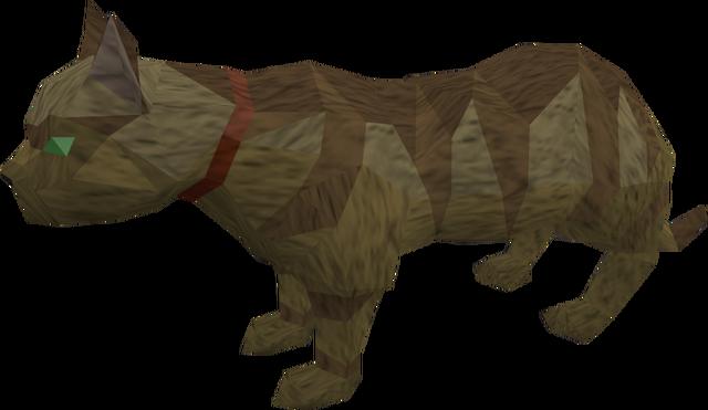File:Overgrown cat (brown) pet.png