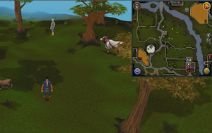 Compass clue Lumbridge south-east of Beefy Bill's Supplies
