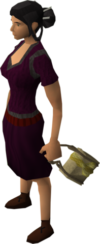 File:Gold satchel equipped.png