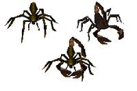Spider-Scorpion Fusion