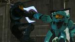 Tex & Tucker fighting