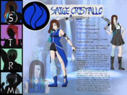 Saige Reference Sheet