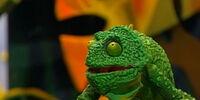 Chaz the Chameleon