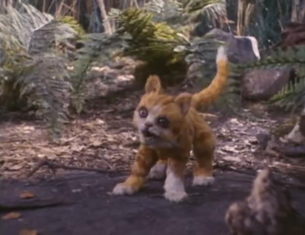 File:Merton the kitten.png