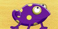Casper the Chameleon