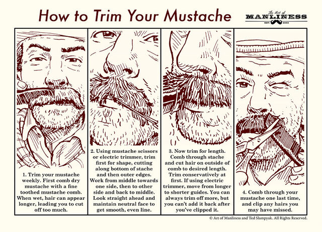File:Trim-Mustache-1.jpg