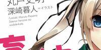 Saenai Heroine no Sodatekata Light Novel Volume 1