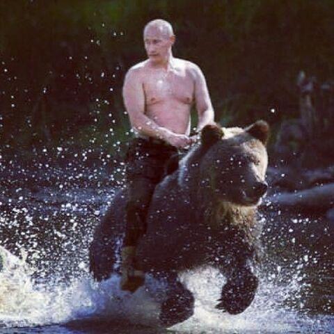 File:Putin-bear.jpg