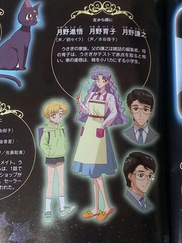 File:2014-07-11-tsukino-family-biography.jpg