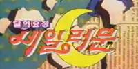 Sailor Moon in Korea