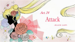 Act 24