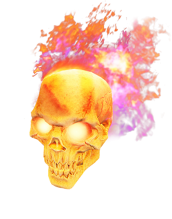 SRGooH weapon special Skull
