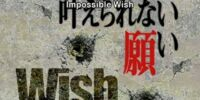 17 Impossible Wish