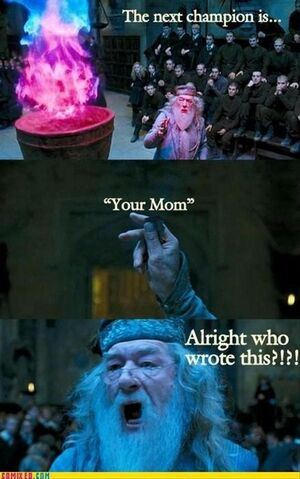 File:Funny-harry-potter-pictures-bacon-wrapped-media-1.jpg