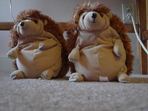 File:Twins!.jpg