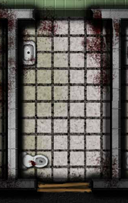 Asylum Cell
