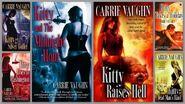Kitty norville books - cv