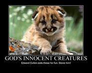 Motiv - edward cullen kills animals