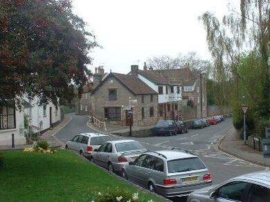 Streetchewmagna1