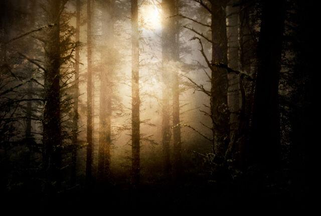 File:Twilight-background.jpg