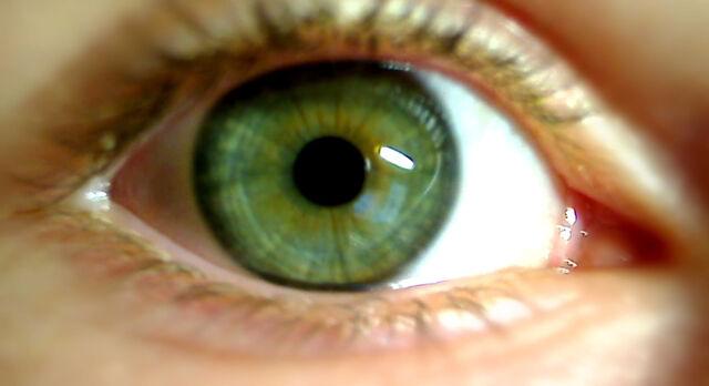 Datei:Grünes Auge.jpg