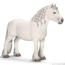 Fell Pony Stallion