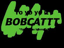 Bobcat header