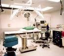 Ιατρική Ορολογία