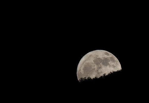 File:Bad Moon Rising.jpg