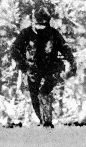 File:Bigfoot Photo.PNG