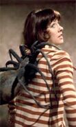 Spider on Sarah Jane
