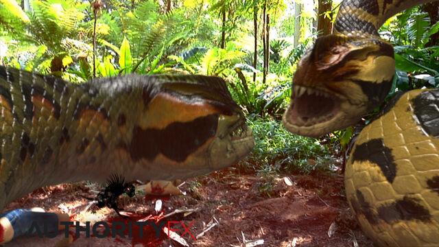 File:Piranhacondas.jpg
