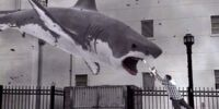 Sharks (Sharknado)/Gallery