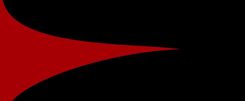 -IIE - SAP- Flag