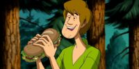 Shaggy Rogers (Solve That Mystery Scooby Doo!)