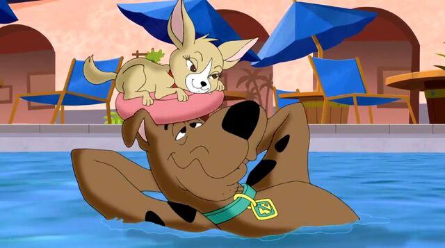 File:Scooby & Chiquita.jpg